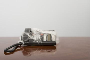 Telephone covered in cobweb