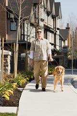 Blind man with a golden retriever