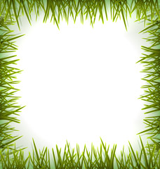 Realistic green grass like frame isolated on white - vector