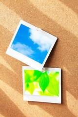 コルク板とインスタント写真