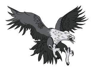 Vector Bald Eagle or Hawk Head Mascot Graphic