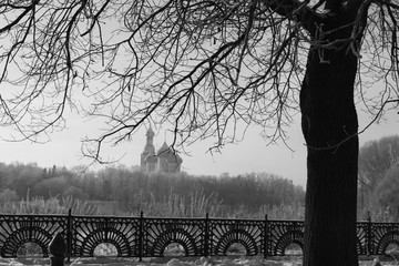 Park in winter black and white
