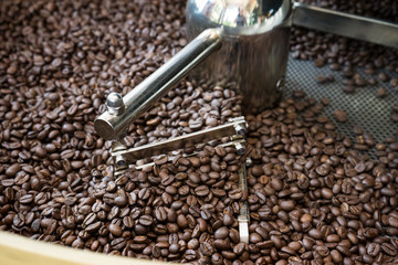 Coffee beans in the roasting machine