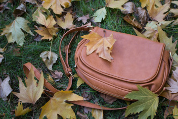 Brown ladies bag on the grass surrounding the colorful leaves