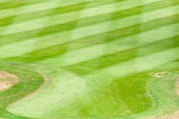 Grass of golf course