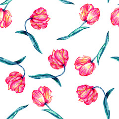 A seamless pattern with the watercolor crimson and scarlet tulips painted on a white background