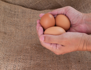 egg , Foods rich in protein