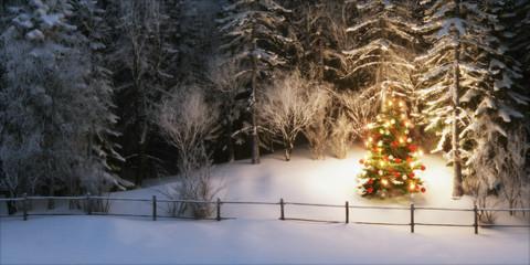 illuminated christmas tree in snowy forrest - beleuchteter weihnachtsbaum in verschneitem Wald