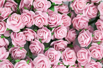 Bunch of light magenta roses for background