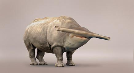 Rhino and shark mutation.
