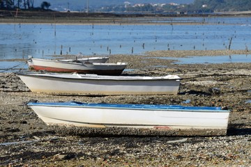 fishing boat on a mooring