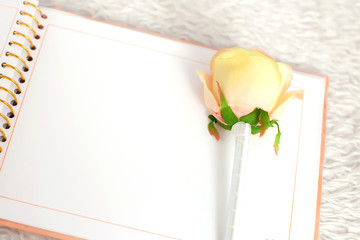 blank notebook and rose on a white carpet