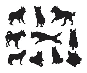 Silhouette Husky Dog Pack