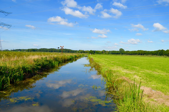 Ditch and green polder landscape in summer in the Netherlands