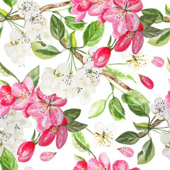 Beautiful pattern with flowers apple and peach.