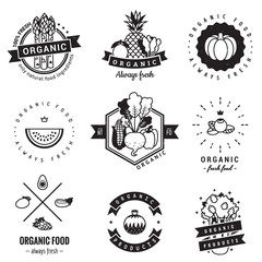 Organic food logo vintage vector set. Hipster and retro style. Perfect for your business design.