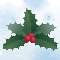 Christmas holly leaves with red berries on a white background of snow