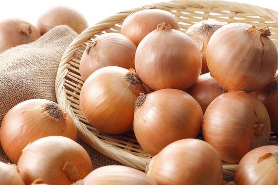 たまねぎ Onion