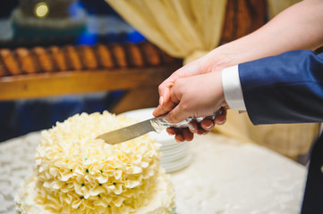 Cutting Beautiful Cake