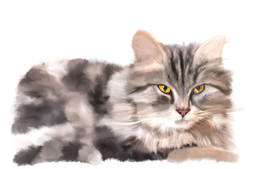 Furry yellow-eyed kitten lying on white background. Expressive digital drawing