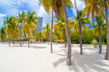 Wall Mural - Sandy beach at Bicentennial park in Miami