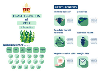 health benefits of kelp (seaweed) infographic