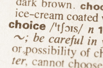 Dictionary definition of word choice