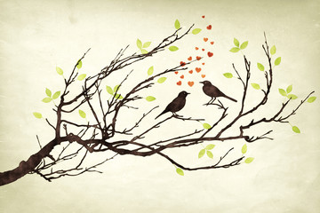 two birds in love watercolors