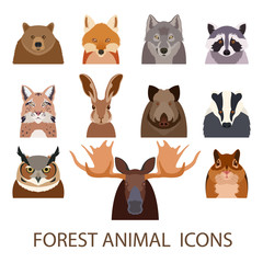 Forest animal flat icons