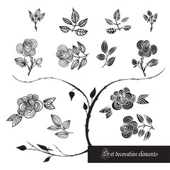 Set of decorative elements, roses and leaves, black and white