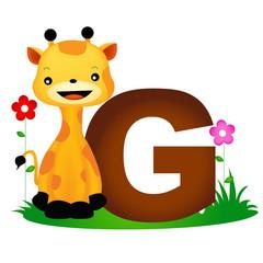 Animal alphabet letter G