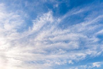 Nice white cloud on blue sky