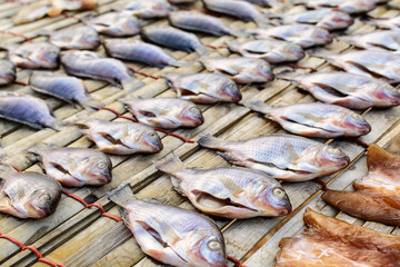 drying stock fish in Thailand, Dried fish