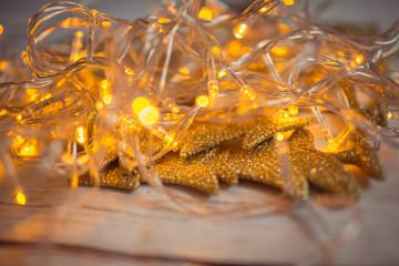 Christmas holiday garland lights