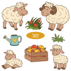 Color set of cute farm animals and objects, vector family sheep