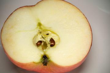 Half Red Apple Macro