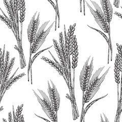 Wheat seamless pattern. Vector illustration in sketch style.