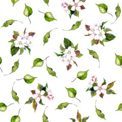 Background with apple flowers and leaves