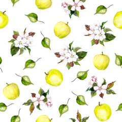 Background with apple flowers, leaves and apples