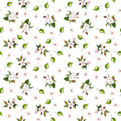 Seamless floral background with spring sakura flowers