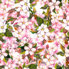 Seamless repeated floral pattern - pink cherry (sakura) and apple flowers. Watercolor