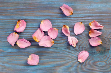 Pink rose petals imaging word love and others scattered around on blue wooden board