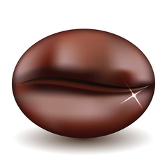 Bean coffee isolated