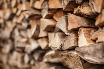 Door stickers Firewood texture background of Heap firewood stack, natural wood