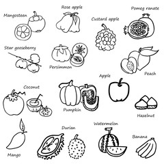 fruits and vegetable drawing set vector