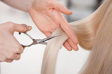 Skillful female hairstylist is cutting human hair