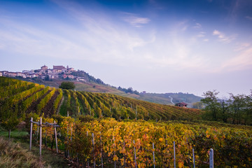 Wall Mural - Langhe vineyards in autumn