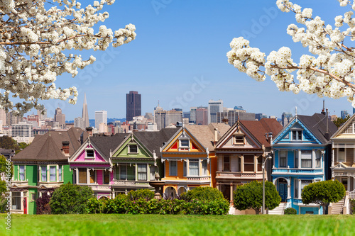 Fototapete Spring photo of Painted ladies and San Francisco s