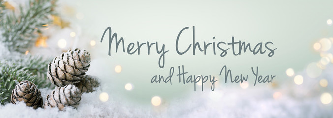 Merry Christmas and Happy New year  -- Christmas Greeting Card