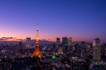 Panoramic view at Tokyo with Tokyo Tower